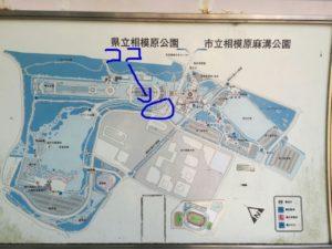 麻溝公園と相模原公園の境に噴水があります。