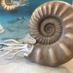 いわき市アンモナイトセンターで化石掘り|自由研究におすすめ