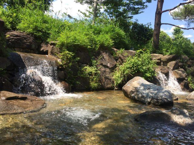 じゃぶじゃぶ池奥の滝です。ただし修行禁止です。