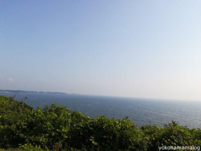 キャンプ場の南側からは海が見えます。キャンプサイトからは直接海は見えませんが、防風のための木だからしかなたいですね。