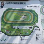東京競馬場の公園で水遊び|おススメは馬シャ馬シャパークの噴水