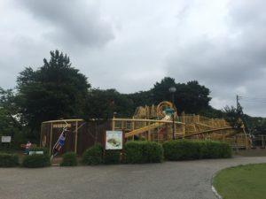 この公園の目玉の1つは大型遊具。