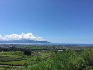 駿府湾とお茶畑を望むナイスビューです!