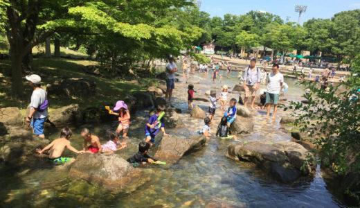 府中市郷土の森博物館で水遊び|じゃぶじゃぶ池が一年中楽しめるスポット
