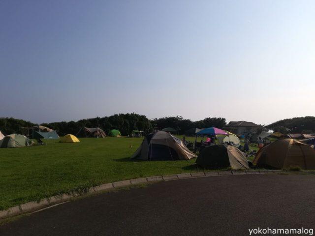 フリーサイトではみなさま思い思いにテントを広げていました。やっぱり広いフリーサイトは良いですよね。