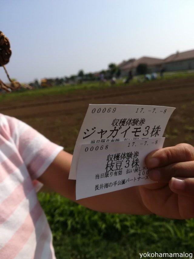 今回は枝豆、ジャガイモどちらとも収穫体験します。