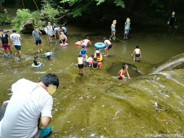 連休ということもあり大混雑の豊英大滝。水がだいぶ濁ってました。