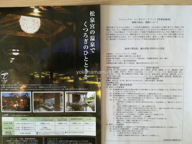 シェラトン宮崎の松泉温泉のパンフレット。効能や価格がのっています。