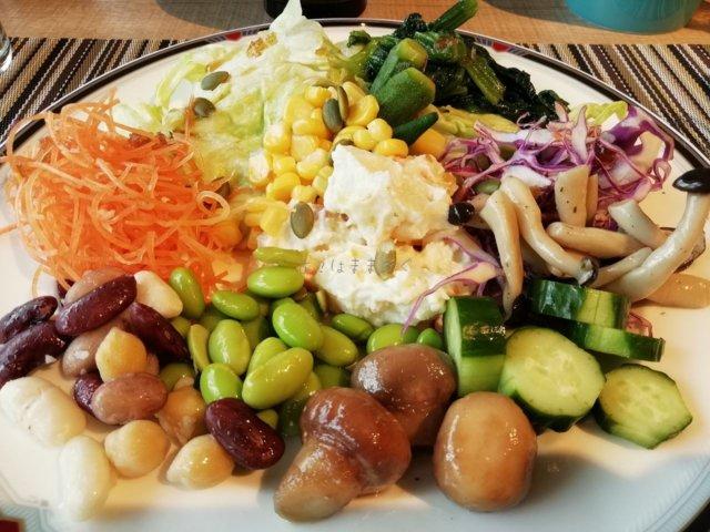 サラダを山盛りでいただきました。