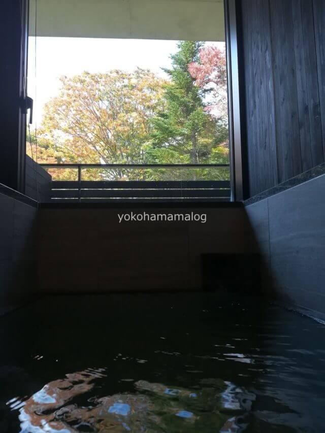 温泉の中からの眺めです。紅葉が見られる良い季節でした。