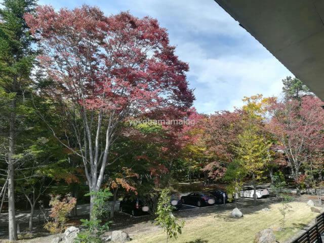 軽井沢マリオットの温泉ビューバスプレミアルームのバルコニーからの眺望です。軽井沢は秋が深まっています。