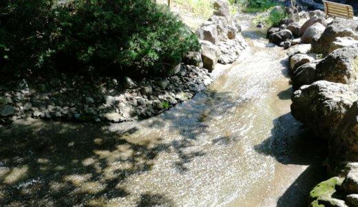 王禅寺ふるさと公園は神奈川県北部の穴場の水遊びスポット